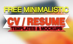 20+ Free Minimalistic Resume PSD Templates & Mockups