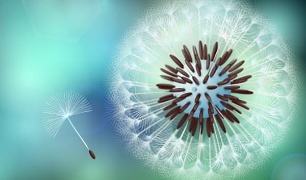 09 How to Create Vector Dandelion with VectorScribe in Adobe Illustrator