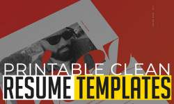 20 Printable Clean CV / Resume Templates with Cover Letters