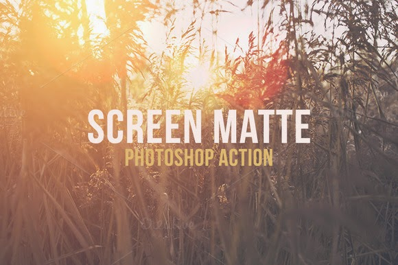 Screen Mate Action