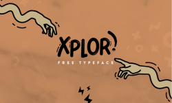 15 Professional Free Fonts For Designer