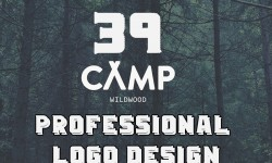 39 Professional logo design for the designer