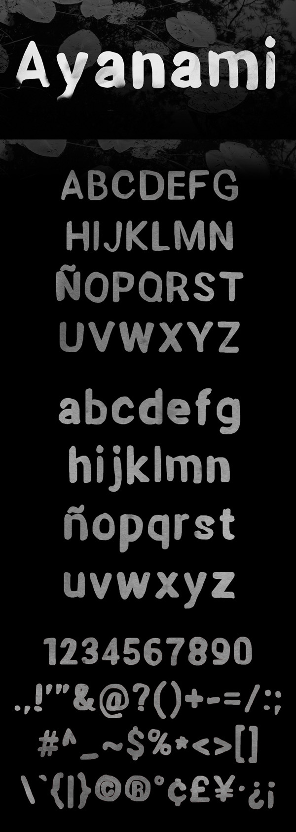 31_Fonts 14
