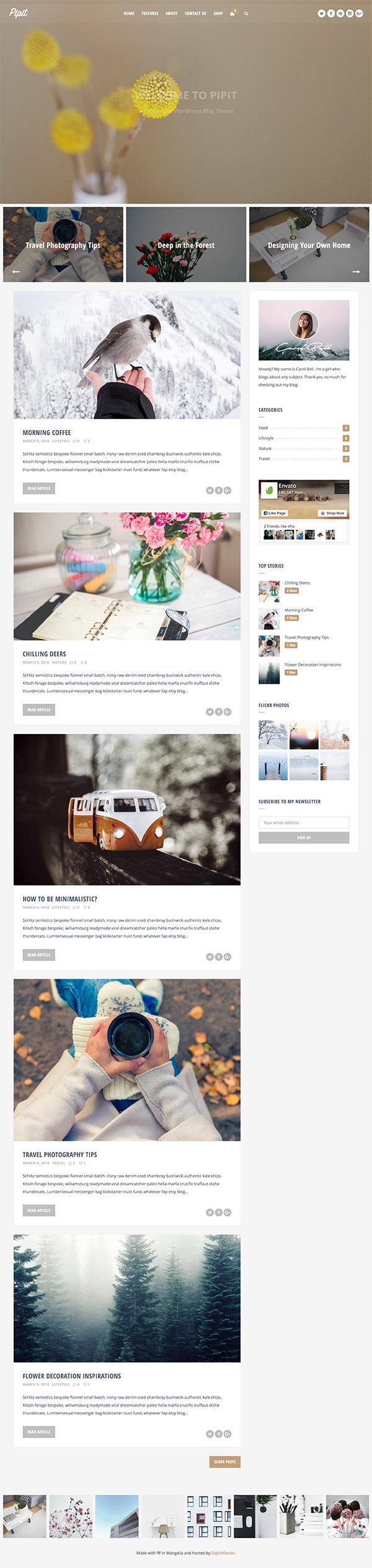 06 Pipit - A Responsive WordPress Blog Theme