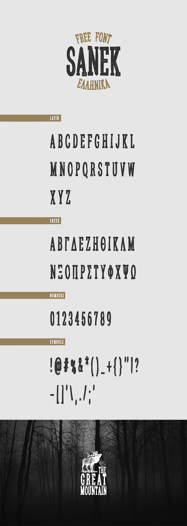 06 Sanek Free Typeface