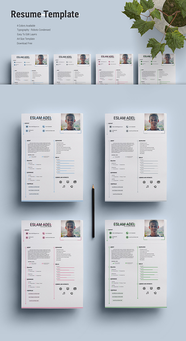 12 Free Resume Template