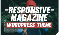 20 Best Responsive WordPress blog & magazine themes.