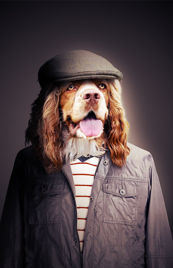 15. How to Create a Human Portrait of a Dog in Photoshop